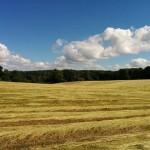 Paille-sible et relaxant - Au détour du chemin de kerhouarn