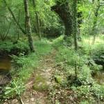 Chemin de randonnée de Villeneuve